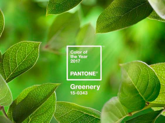 greenery-pantone_web