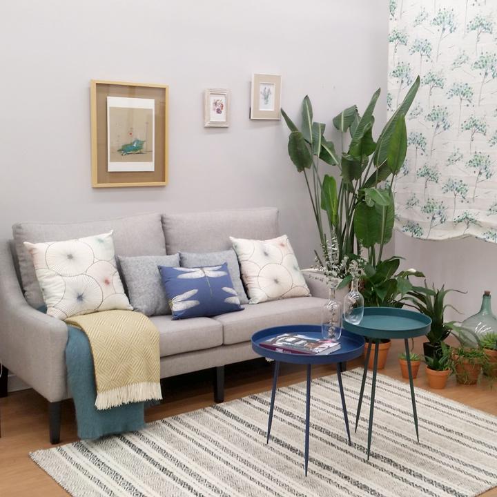 Plantas para decorar interiores en Burgos